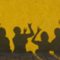 shadow-198682